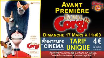 Royal Corgi Dimanche 17 Mars à 11h00